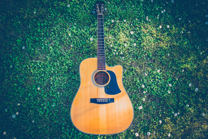Close-up of guitar in the grass