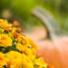 Go From Halloween To Fall In A Flash