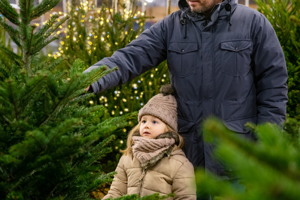 Father and daughter choose a Christmas tree in the market.