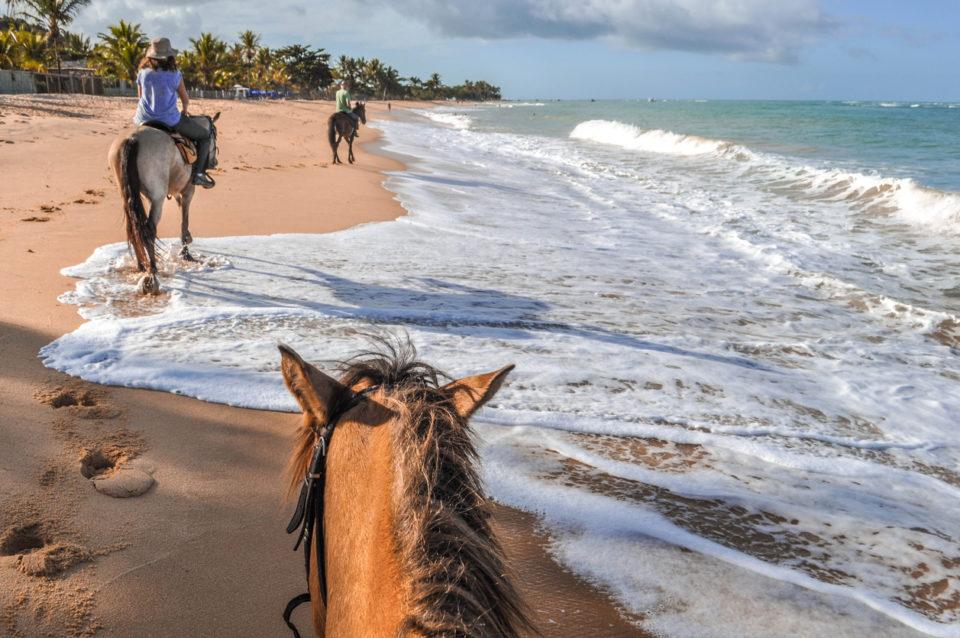 Horseback riding on the beaches
